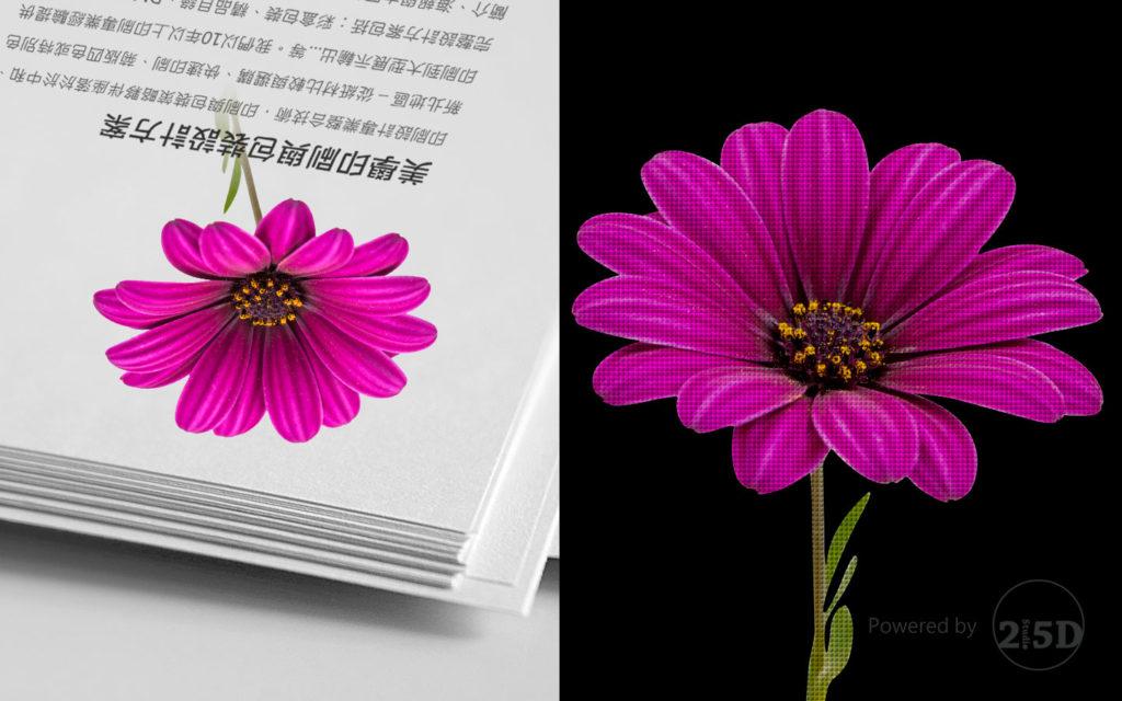 花,解析度,网页设计,品牌顾问,推荐,色彩学,印刷,数位,CMYK,RGB,Color