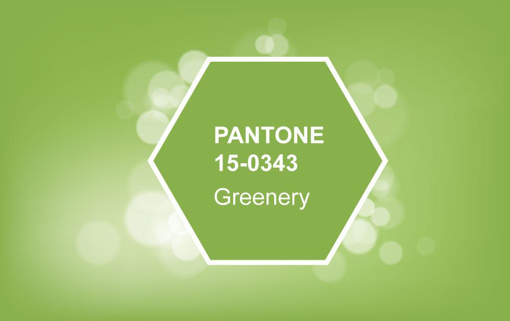 网页设计公司,品牌设计,推荐,light,Greenery,流行色,配色,2017,PANTONE,色彩