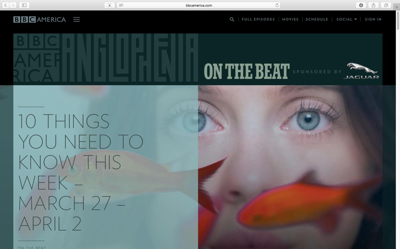 bbcamerica, 杂志, 报纸, 图文, 编排, 设计